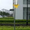 力群牌生态农业智能防盗频振式太阳能灭虫灯全国招商